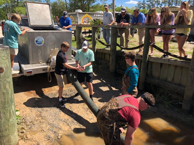 Lyman Hatchery assists Ocean Springs High School's aquaculture students with the release of 550 Striped Bass into Fort Bayou.